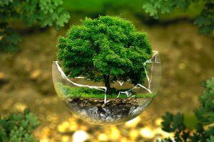 Sustainability-Forum