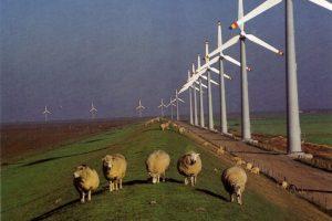 projekte_inland_windpark_ostfriesland_naturstrom_ag