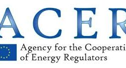 ACER still finds contractual congestion in the European Gas Transmission Network